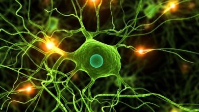 Data Science: Deep Learning and Neural Networks in Python