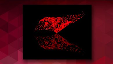 The Complete Ruby on Rails Developer Course 9